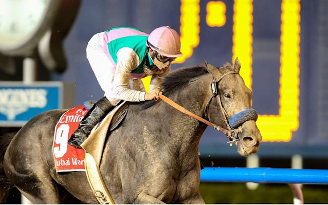 <span>Arrogate triumphed by two and three-quarter lengths</span> <span>Credit: Rex Features </span>