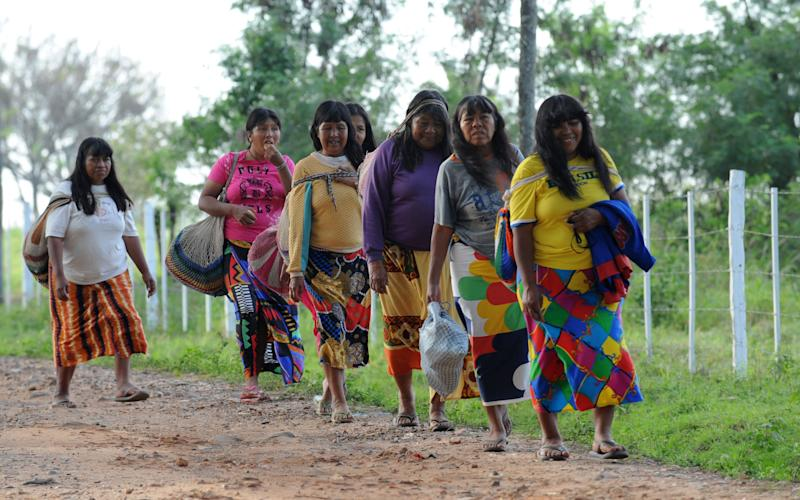 Paraguayan indigenous women walk in line as they head to the II Congress of Education of Natives on August 14, 2009 in Cerrito, Chaco, Paraguay (AFP Photo/Norberto Duarte)