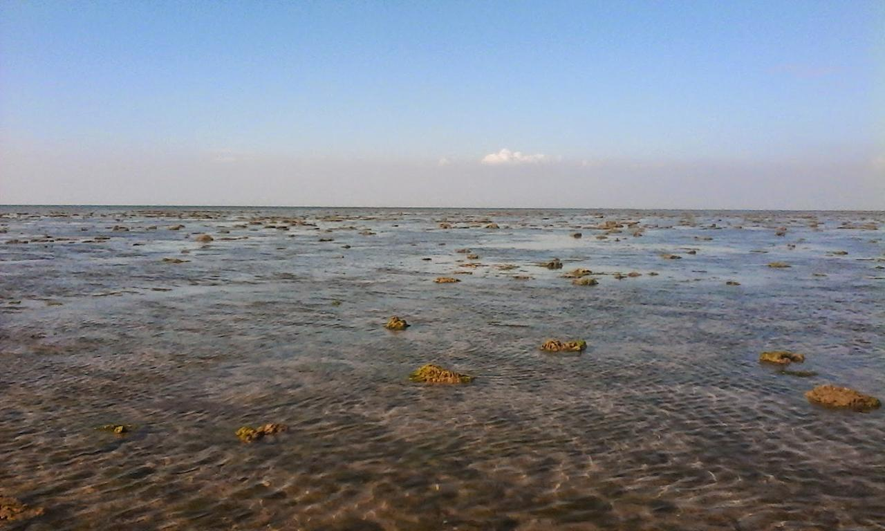 <p>Marine National Park, Gulf of Kutch: The first marine national park in India, this park comprises of 42 islands, housing abundant coral reefs and rare marine species in clear water. Source: http://www.transindiatravels.com/india/best-places-to-visit-in-india/ </p>