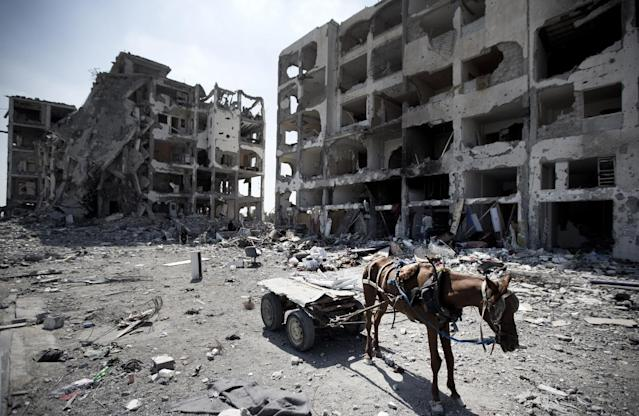 A picture taken on August 11, 2014 in Beit Lahia in Gaza Strip shows a donkey cart in front of the destroyed Nada Towers as Palestinians return to the area to inspect what remains of their homes during a 72-hour ceasefire observed in the Gaza Strip (AFP Photo/Mahmud Hams)