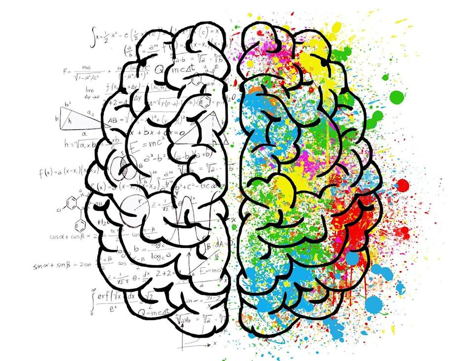 """<span class=""""caption"""">brain</span> <span class=""""attribution""""><a class=""""link rapid-noclick-resp"""" href=""""http://creativecommons.org/licenses/by-nc/4.0/"""" rel=""""nofollow noopener"""" target=""""_blank"""" data-ylk=""""slk:CC BY-NC"""">CC BY-NC</a></span>"""