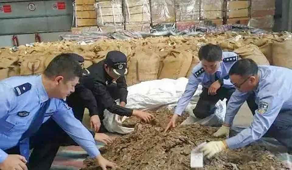 Police in Wenzhou intercepted a shipment of scales in October 2019. Photo: Weibo