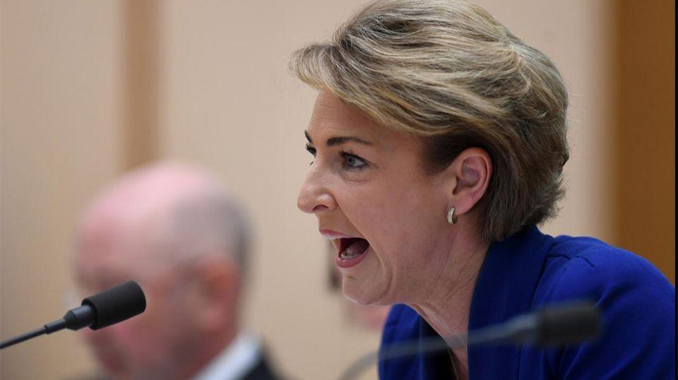 Michaelia Cash has admitted a staff member told media about police raids on the offices of the AWU. Source: AAP