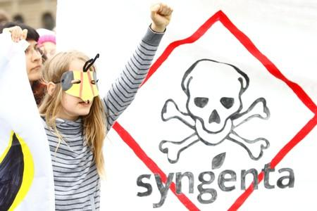 "FILE PHOTO: A young protestor with a bee mask takes part in ""March against Bayer & Syngenta"" demonstration in Basel"