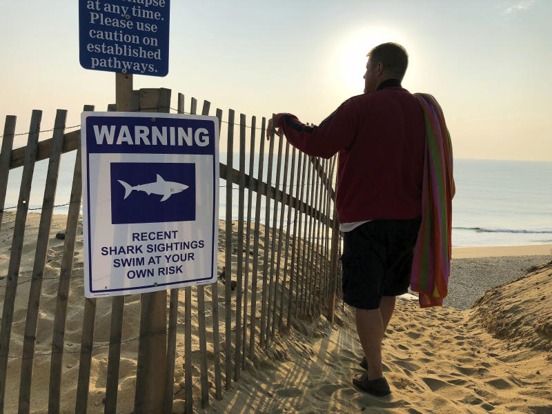 FILE - In this Aug. 16, 2018 file photo, Steve McFadden, 49, of Plattsburgh, N.Y., gazes at Long Nook Beach in Truro, Mass., on Cape Cod, which was closed to swimmers after a man was attacked by a shark the previous afternoon. Cape Cod authorities said they are concerned about the safety of beachgoers during the Labor Day weekend, but also in the days beyond when lifeguards leave but sharks remain. (AP Photo/William J. Kole, File)