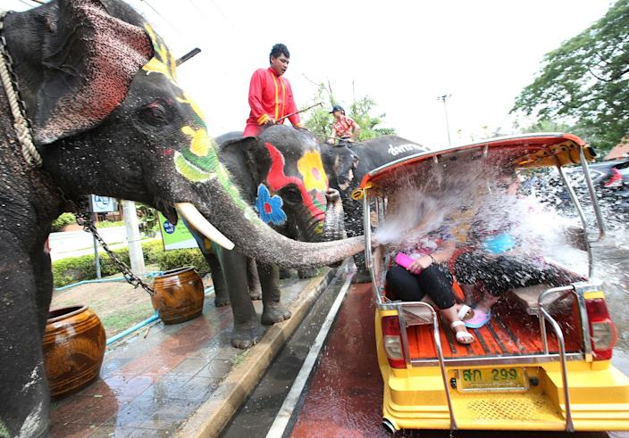 <p>With assist from its mahouts, elephants blow water from their trunk to tourists on motor-tricycle or Tuk Tuk, ahead of the Buddhist New Year, known here as Songkran, in Ayutthaya province, central Thailand, Tuesday, April 11, 2017. The three-day new year festival will start on April 13. (AP Photo/Sakchai Lalit) </p>