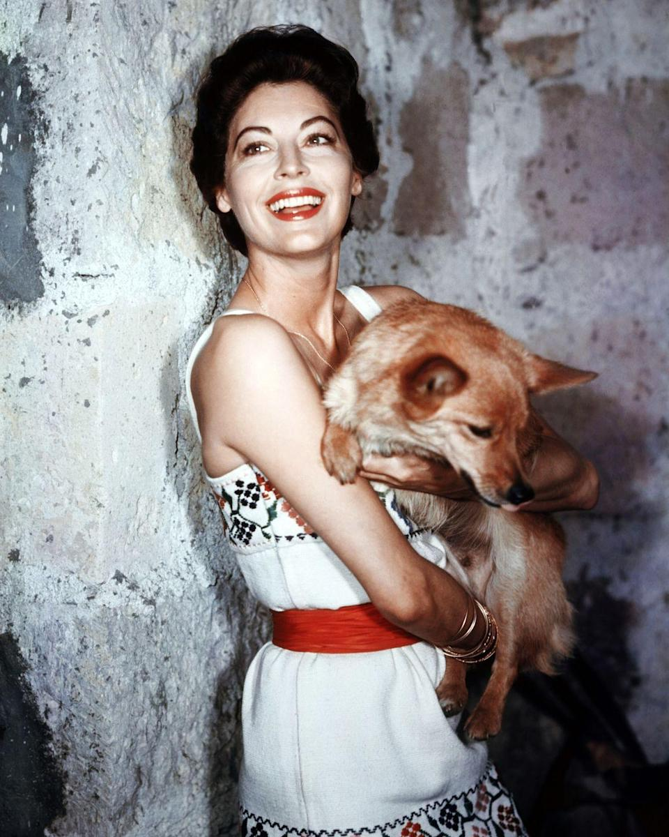 <p>The look of summer: Gardner poses with a pup (Sinatra gifted her a Corgi named Rags when they were married) in her arms for a studio portrait in 1955 wearing a floral embroidered dress and a red belt matched by her ruby red lip color. <br></p>
