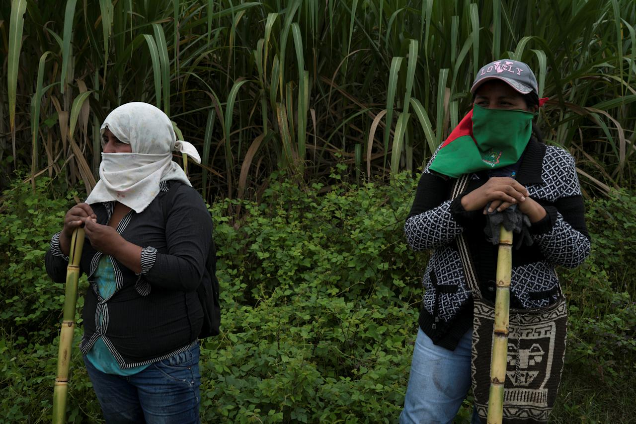 """Members of the Nasa indigenous tribe and """"Liberation of Mother Earth"""" movement stand on a sugar cane field they claim as their ancestral lands in Corinto, Colombia, May 11, 2017. Picture taken May 11, 2017. REUTERS/Federico Rios"""
