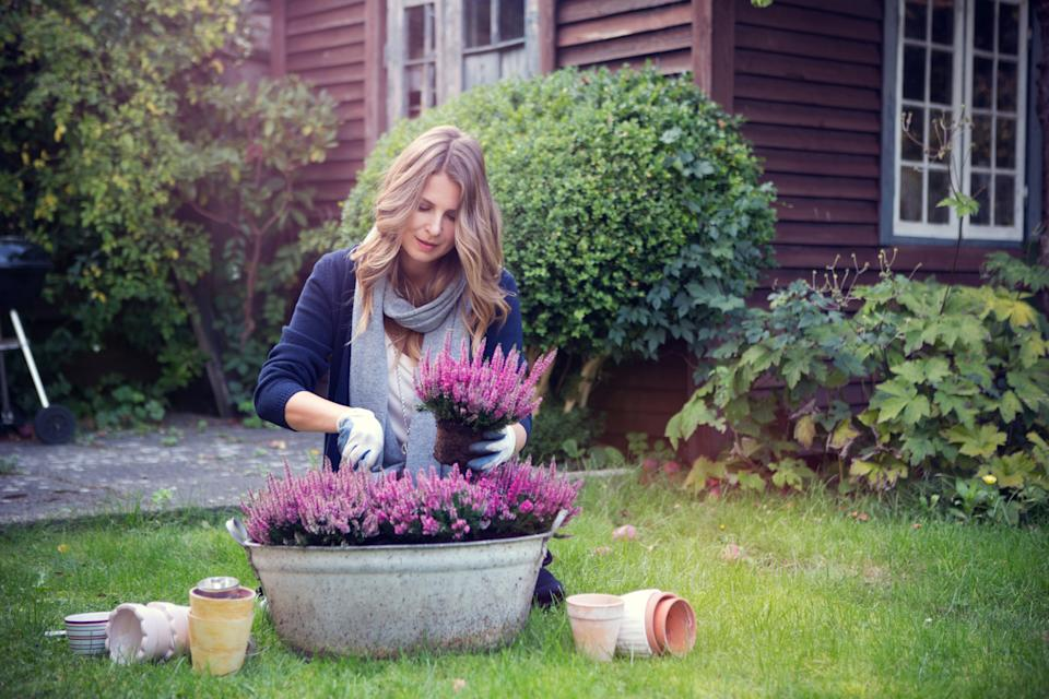Gardens can be good for our wellbeing. (Getty Images)