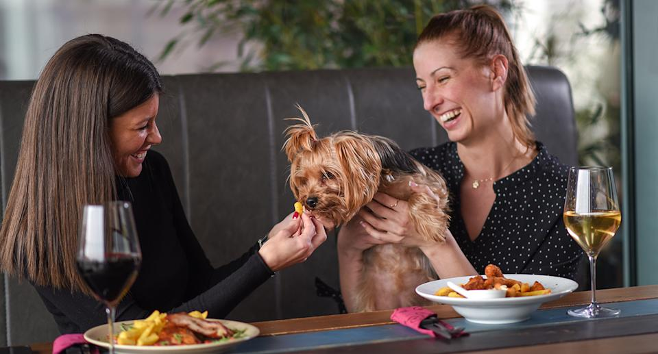 Two women feed a dog chips in a restaurant.