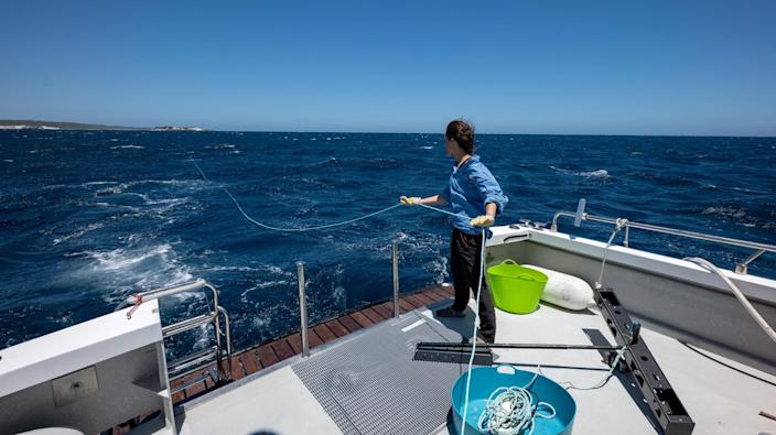 Researcher Naima Andrea Lòpez with a midwater BRUVS (Courtesy Blue Abacus)