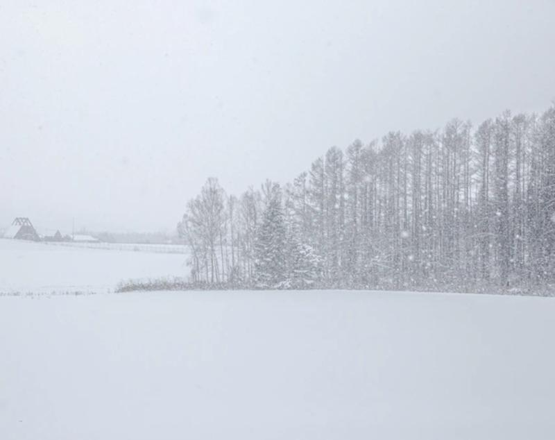 Prairies: Snow continues as strong winds accompany temperature drop