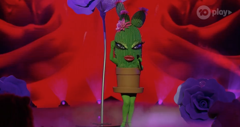 The Cactus on The Masked Singer