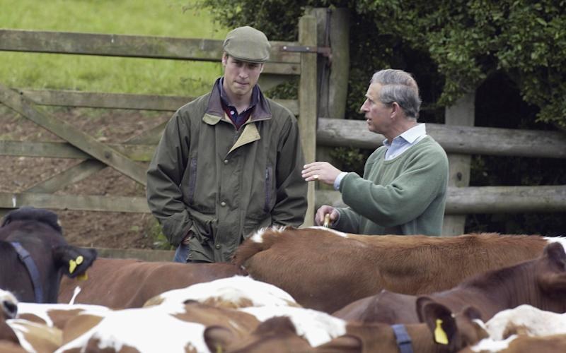 TETBURY, ENGLAND - MAY 29: HRH Prince William speaks with his father Prince Charles during a visit to Duchy Home Farm as part of his ongoing interest in farming and his father's estate, May 29, 2004 in Tetbury, England. (Photo by Anwar Hussein/Getty Images)