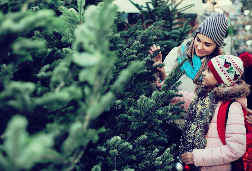 To keep your Christmas tree looking its best, keep it well away from the radiator [Photo: Getty]