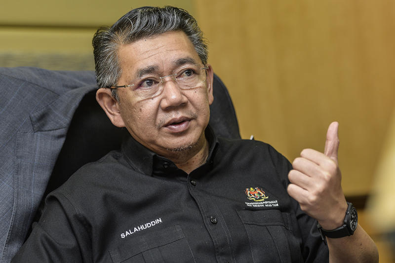 Agriculture and Agro-based Industry Minister Datuk Salahuddin Ayub says the ministry has placed four conditions on the Penang state government for its Penang South Reclamation project. — Picture by Miera Zulyana