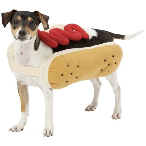 Frisco Hot Dog Dog & Cat Costume. (Photo: Chewy)