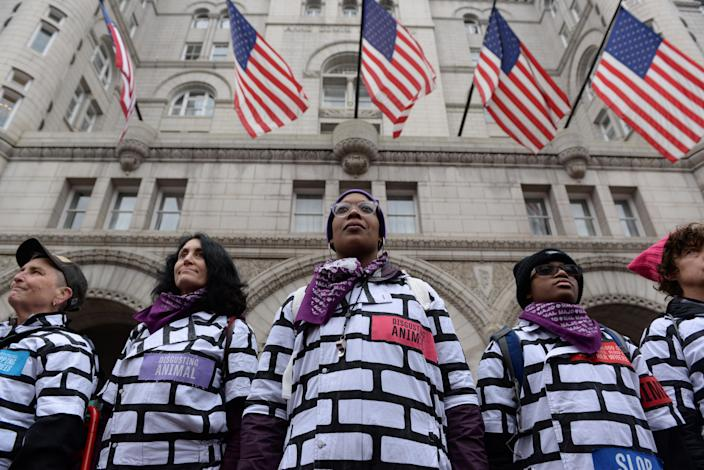 Women wear wall protest outfits as they stand in front of the Trump International Hotel while participating in the Third Annual Women's March in Washington, Jan. 19, 2019. (Photo: /Erin Scott/Reuters)