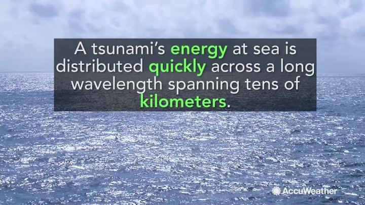 Experts say that whether an earthquake-triggered tsunami affects a cruise ship depends largely on where the ship is located.