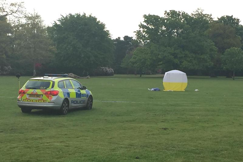 Police at the scene in Dulwich Park: Matt Watts