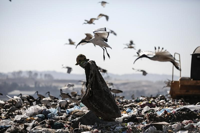 A reclaimer wades through the waste at Robinson Deep landfill, Johannesburg's largest landfill on June 29, 2018