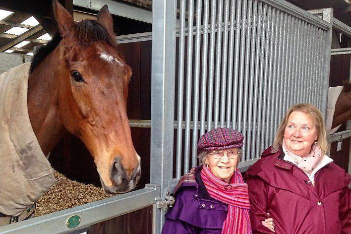 Leading light: Gold Cup hopeful Cue Card with his 83-year-old owner Jean Bishop
