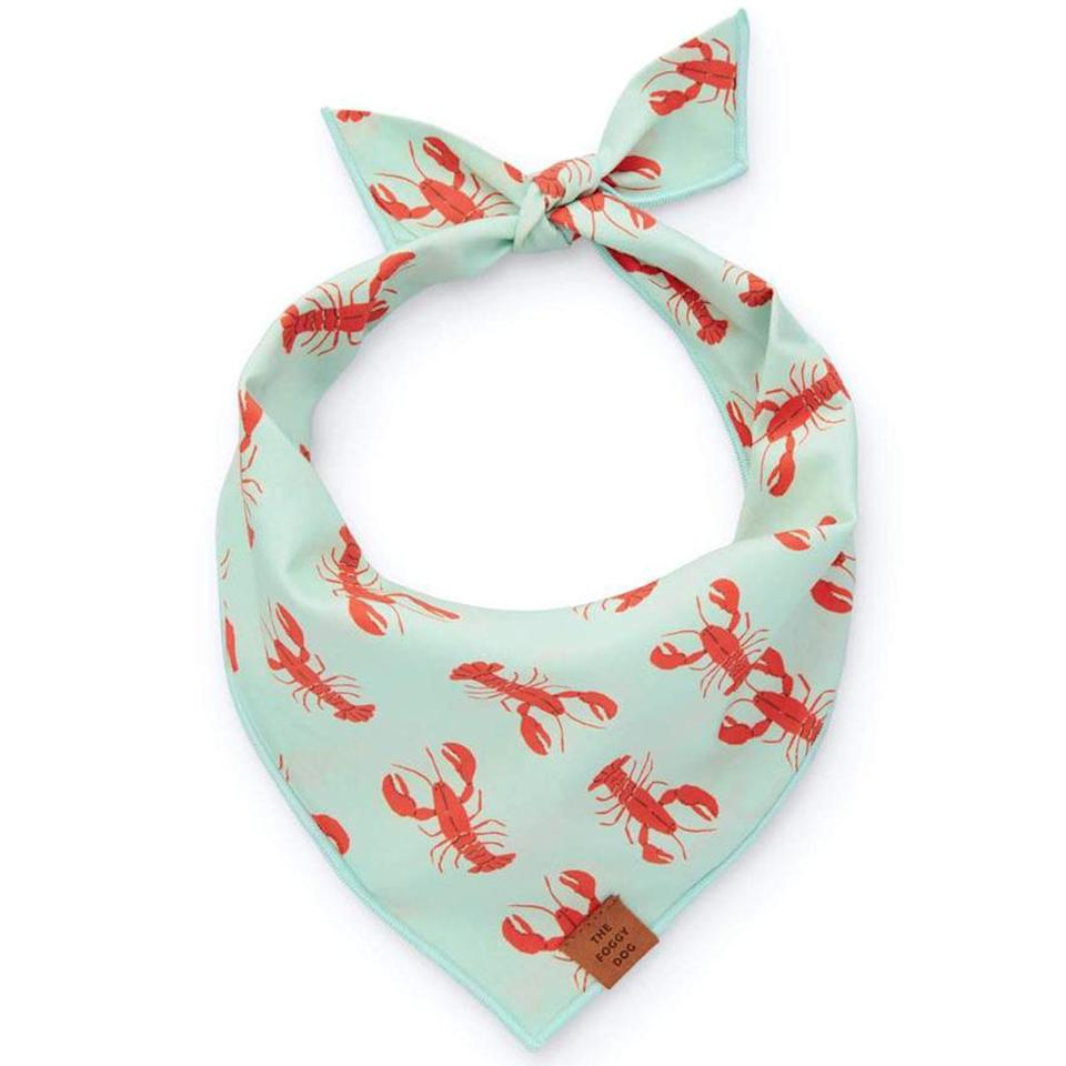 """<p>Make sure your dad's pet is ready for every summer selfie with this playfully patterned bandana. </p> <p><strong>Buy it!</strong> Catch of the Day Dog Bandana, $26.00; <a href=""""https://www.thefoggydog.com/collections/dog-bandanas/products/catch-of-the-day-dog-bandana"""" rel=""""nofollow noopener"""" target=""""_blank"""" data-ylk=""""slk:TheFoggyDog.com"""" class=""""link rapid-noclick-resp"""">TheFoggyDog.com</a></p>"""