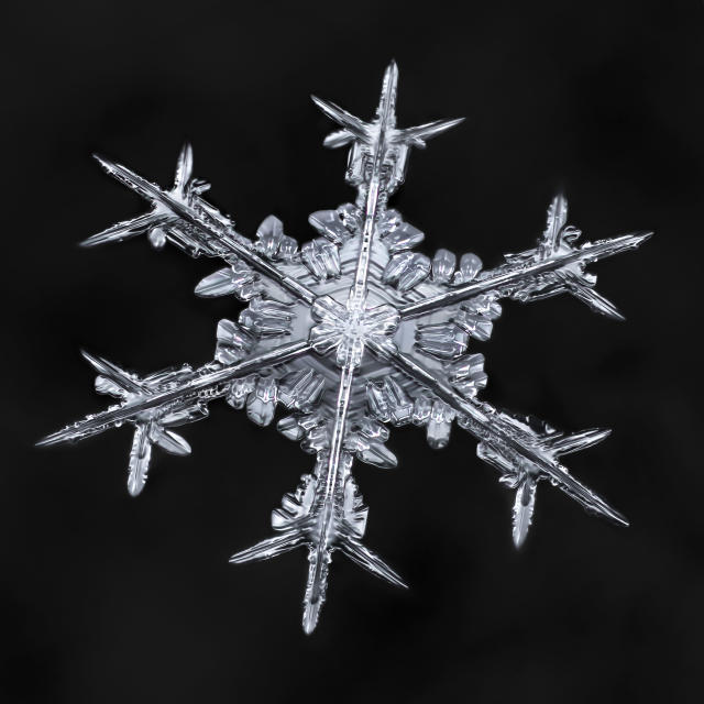 <p>These incredible images capture the intricate details of minuscule snowflakes, moments before they melt. (Photo: Don Komarechka/Caters News) </p>