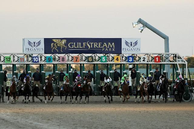 The Pegasus World Cup Invitational, which took place for the first time this year at Gulfstream Park in Hallandale, Florida, will offer prize money of $16 million for its 2018 event (AFP Photo/Mike Ehrmann)
