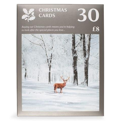 National Trust Large Value Pack Christmas Cards, Pack of 30 - Credit: National Trust