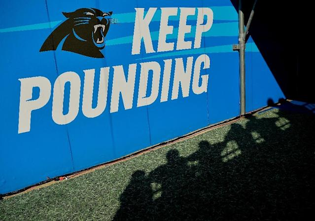 """The first thing I care about is winning,"" said new Carolina Panthers owner David Tepper (AFP Photo/GRANT HALVERSON)"