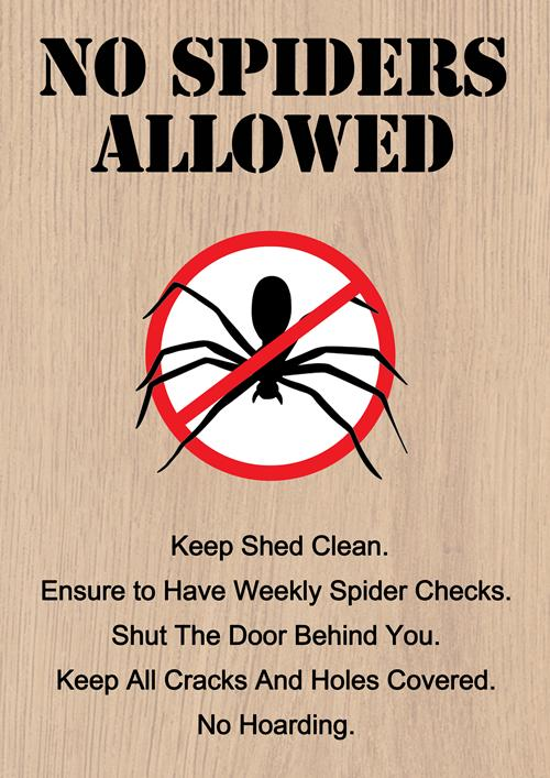 how to keep spiders away from your home