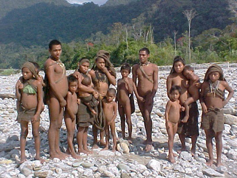 Brazil: Isolated Tribe Seen at Risk Following Incomplete Flu Treatment