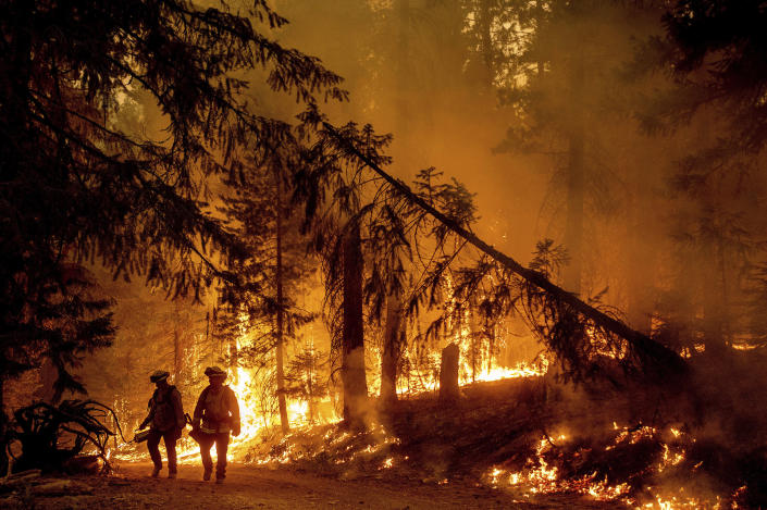 Firefighters light a backfire to stop the Dixie Fire from spreading near Prattville in Plumas County, Calif., on Friday, July 23, 2021. (AP Photo/Noah Berger)