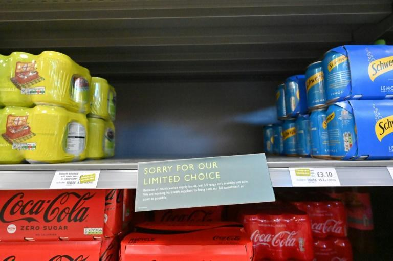 Signs apologising for the lack of stock are now a common sight in British shops (AFP/JUSTIN TALLIS)
