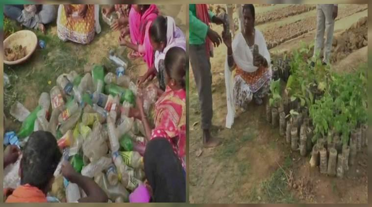Chhattisgarh forest department reuse plastic to grow plants and saplings, eco-friendly initiative, Chhattisgarh forest department eco friendly initiative, Trending, Indian Express news