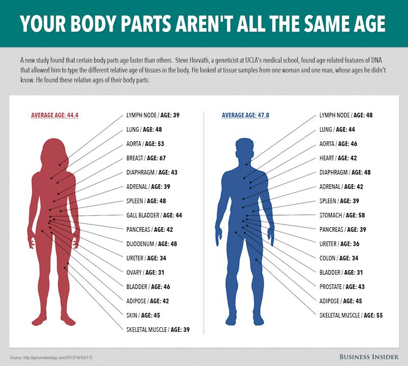 Some Parts Of Your Body Age Faster Than Others