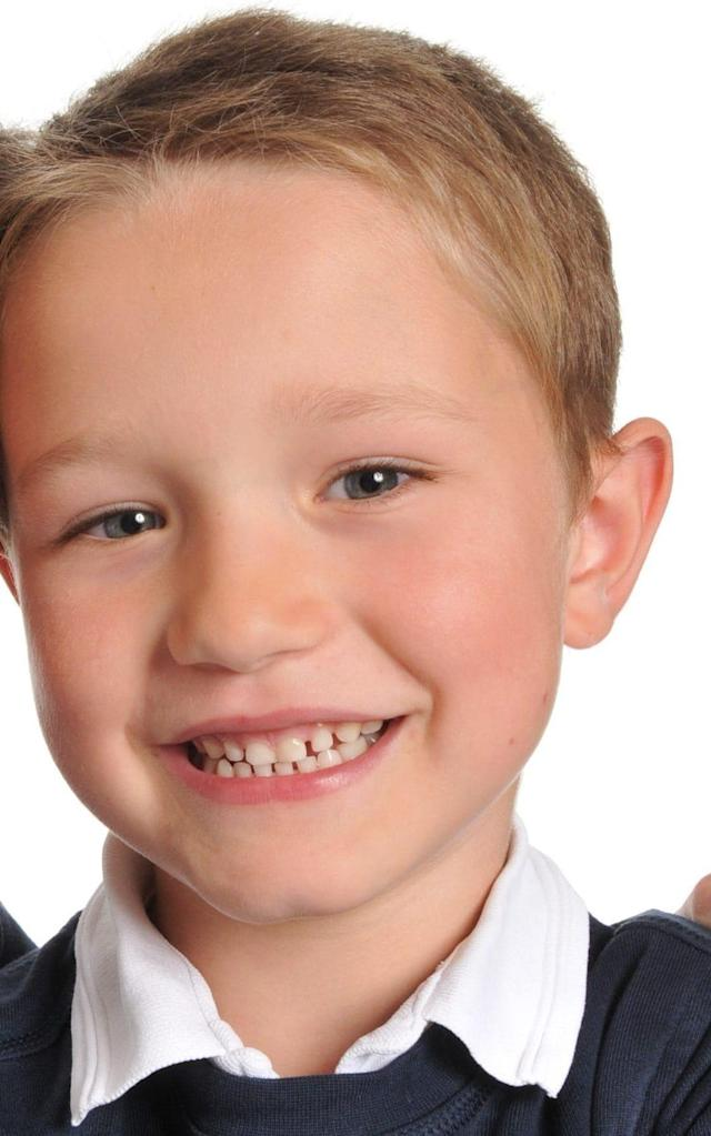 The death of Sebastian Hibberd, aged six, prompted concerns about the NHS systems used to prioritise calls - PA