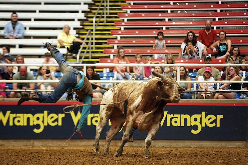 MESQUITE, TX - JUNE 06: A rider gets thrown in the men's bull riding competition during the first day of competition of the Mesquite Championship Rodeo at Mesquite Rodeo Arena on June 6, 2020 in Mesquite, Texas. The rodeo kicks off its 63rd consecutive year while operating at 25 percent capacity due to the COVID-19 pandemic, with organizers instituting pre-designated seating and extra precautions to sanitize high-touch surfaces, as well as encouraging social distancing. The rodeo runs through the end of August. (Photo by Omar Vega/Getty Images)