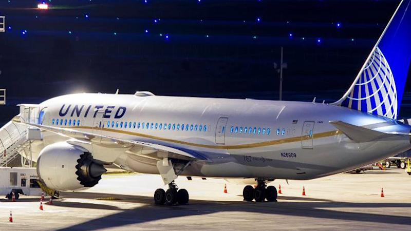 Dog Dies on United Airlines Flight After Attendant Orders It Stowed in Overhead Bin