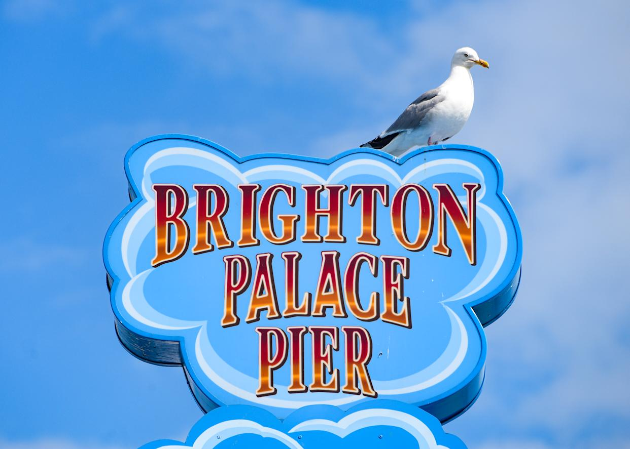 The Brighton Palace Pier, commonly known as Brighton Pier or the Palace Pier[a] is a Grade II* listed pleasure pier in Brighton, England, located in the city centre opposite the Old Steine.