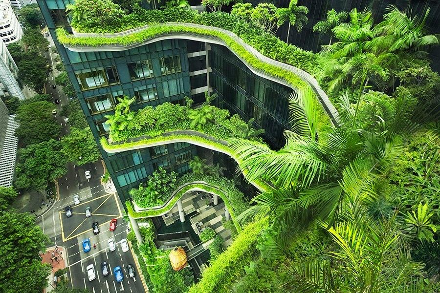 "<p>The hotel contains more than 161,000 square feet of green space, including plants, waterfalls, terraces, and living walls. (Photo: <a href=""http://www.parkroyalhotels.com/"">PARKROYAL Hotels</a>)</p>"