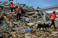 Indonesian police officers with a K9 unit sniffer dog search for victims among the ruins of a hospital building collapsed following an earthquake in Mamuju