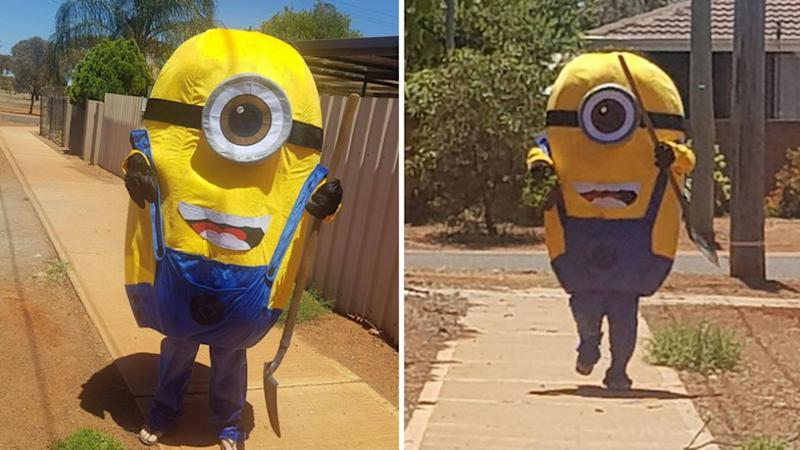 The minion has since started taunting Mr Nicklin, posing for photos with his newly acquired lawn. Source: Facebook