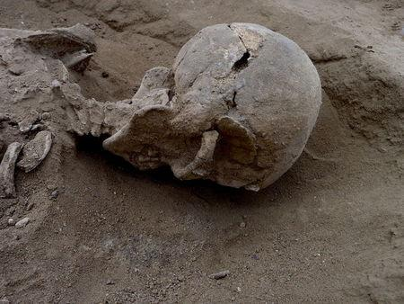 Handout photo of the detail of the skull of the skeleton of a man found lying prone in the sediments of a lagoon 30km west of Lake Turkana, Kenya, at a place called Nataruk