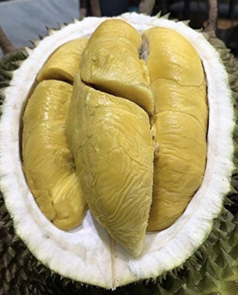 Durian Musang King (MSW) 800g (freshly packed durian) without shell, S$55.55 (was S$69.90). PHOTO: Amazon