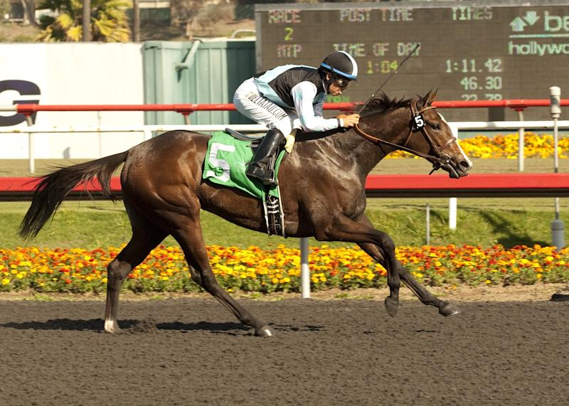 Bajan wins Moccasin Stakes at Hollywood Park