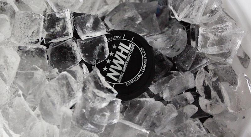 BROOKLYN, NY - OCTOBER 25: An official NWHL puck sits in an ice bucket prior to the game between the New York Riveters and the Connecticut Whale of the National Womens Hockey League on October 25, 2015 in Brooklyn borough of New York City. (Photo by Bruce Bennett/Getty Images)