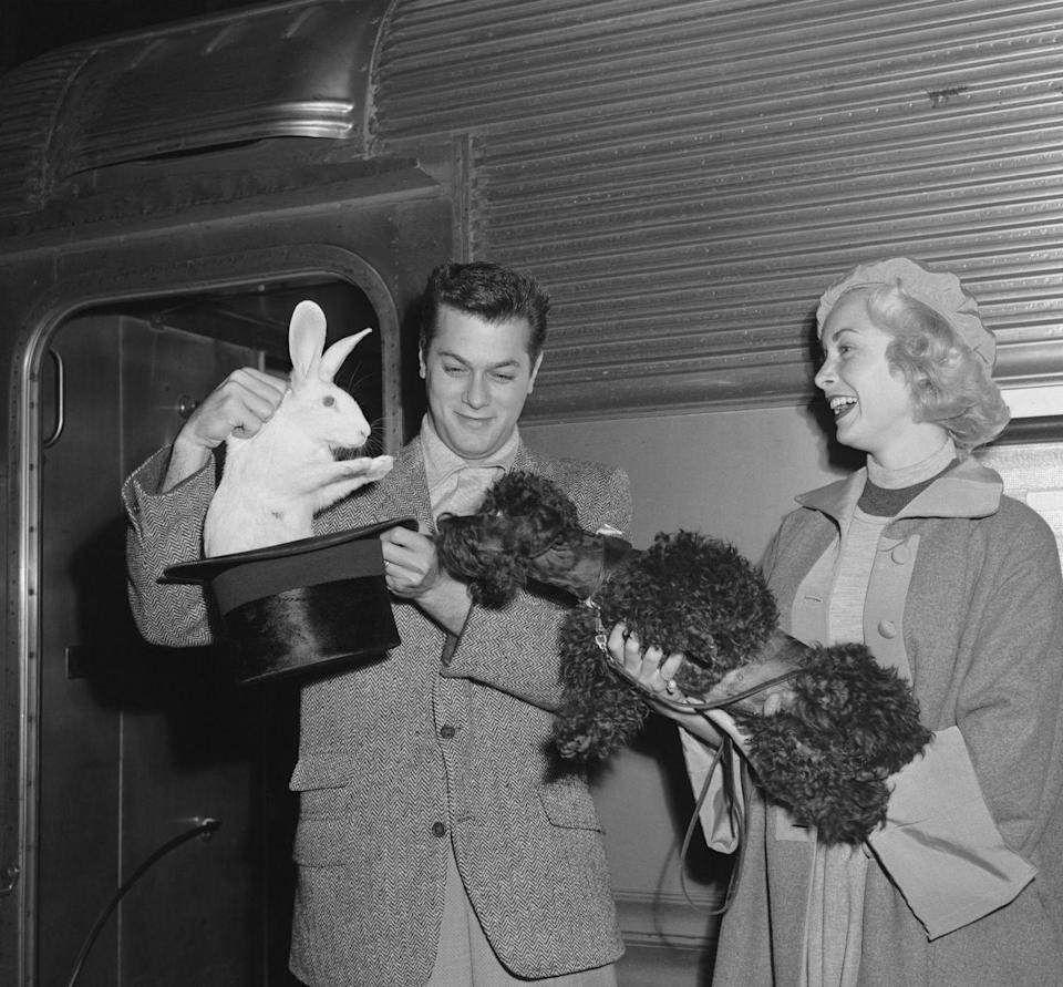 <p>Tony Curtis and Janet Leigh drummed up plenty of publicity on the platform at New York's Grand Central Terminal with their arrival home from filming <em>Houdini </em>in California. The married couple surprised their black Poodle, aptly named Houdini, by pulling a live rabbit from a top hat. </p>