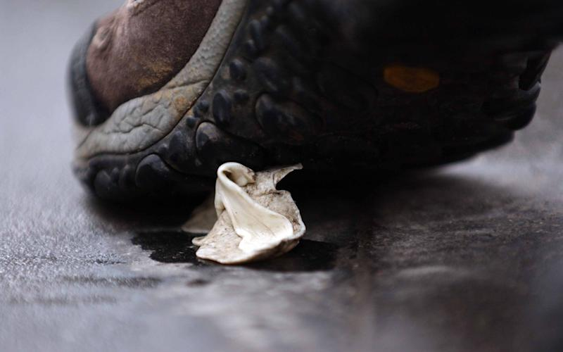 A piece of discarded chewing gum is picked up by a man's shoe  - Credit: PAUL GROVER